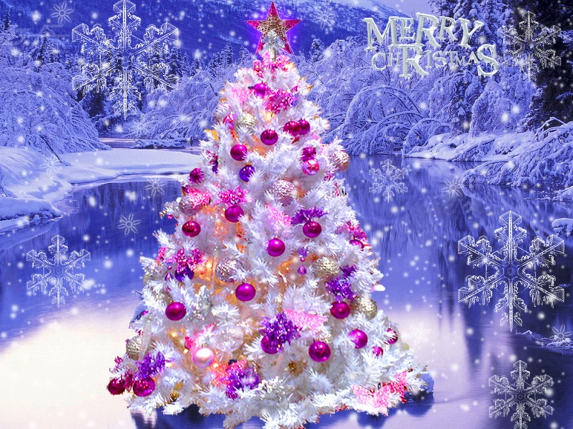 Beautiful-Christmas-Tree-christmas-27617948-1024-768